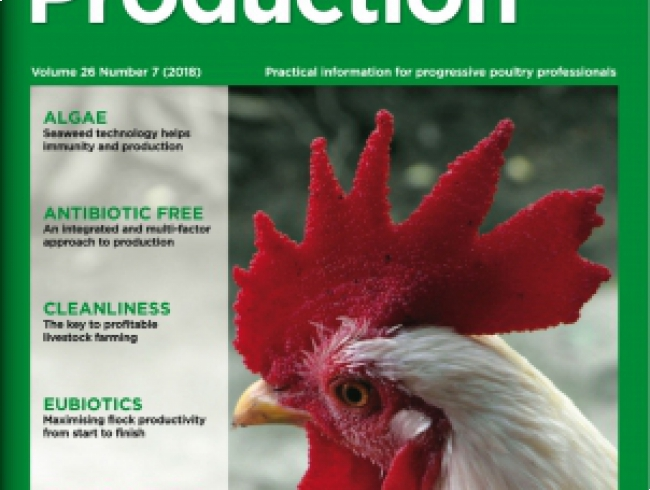 International Poultry Production 26.7