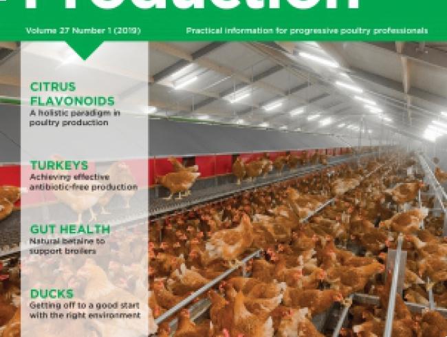 International Poultry Production v.27 N° 1