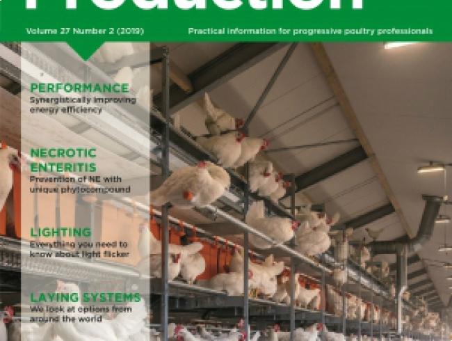 International Poultry Production v.27 N° 2