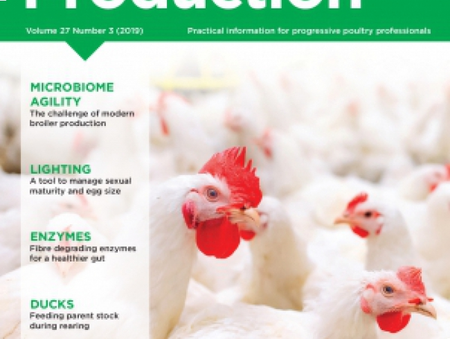 International Poultry Production v.27 N° 3