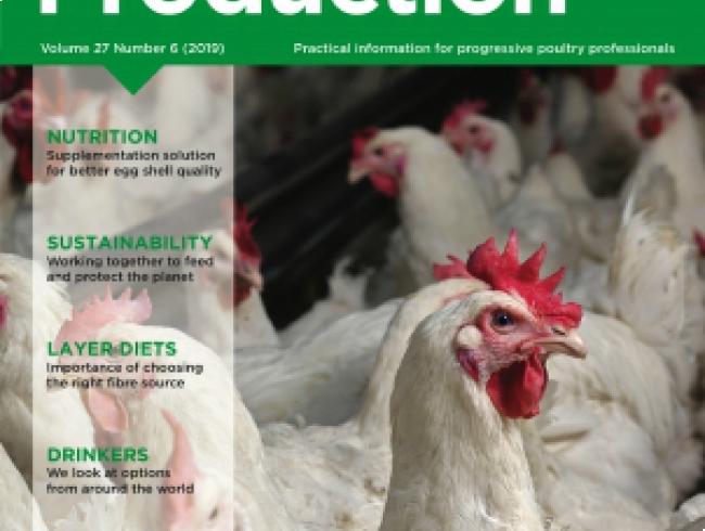 International Poultry Production v.27 N° 6