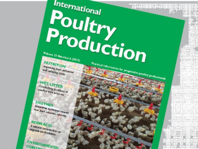 International Poultry Production vol 23 n.6