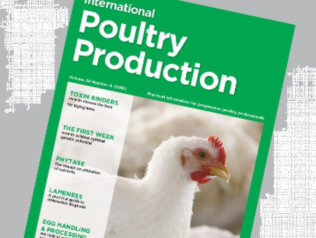 International Poultry Production vol 24 n.4