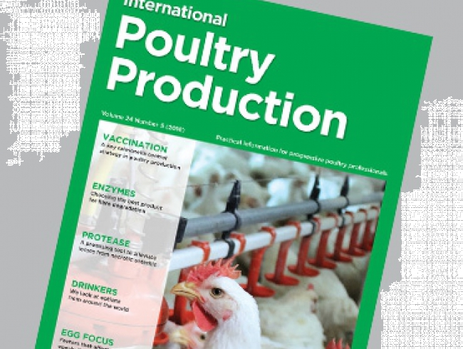 International Poultry Production 24.5