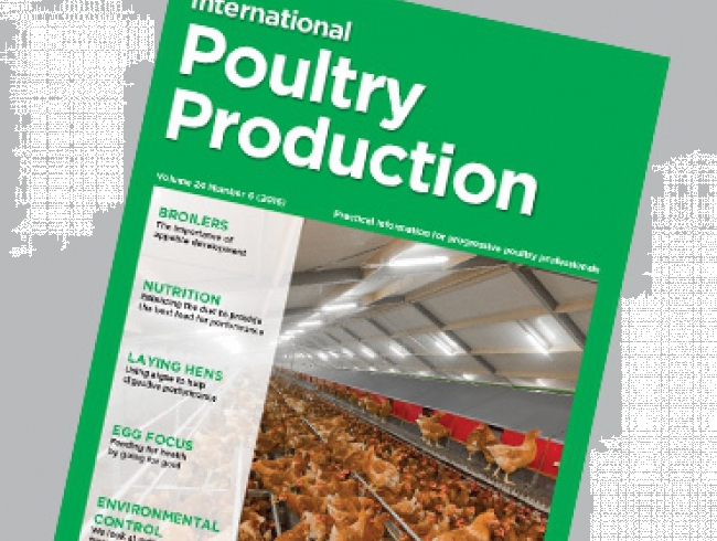 International Poultry Production 24.6