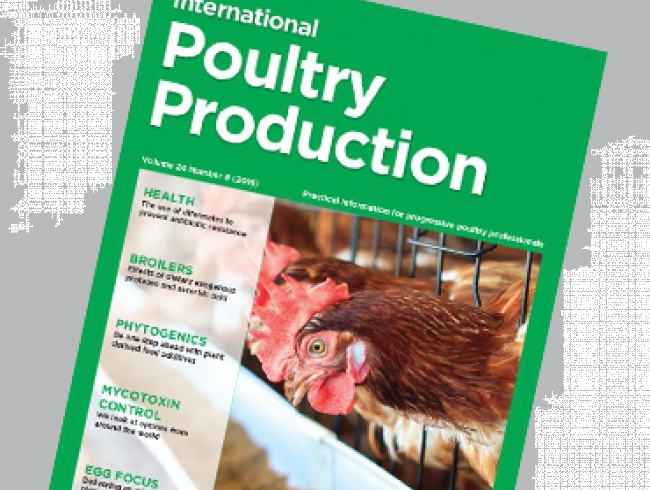 International Poultry Production 24.8