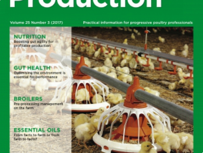 International Poultry Production v 25 n° 3