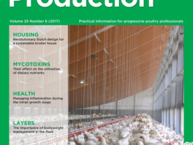 International Poultry Production 25.6