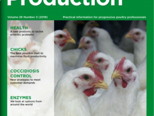 International Poultry Production v 26 n° 3